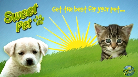 Get The Best For Your Pet!