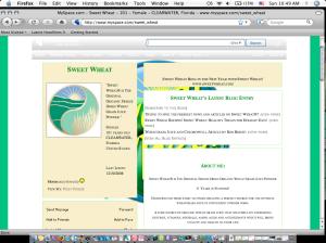 sw-myspace-screen-cap